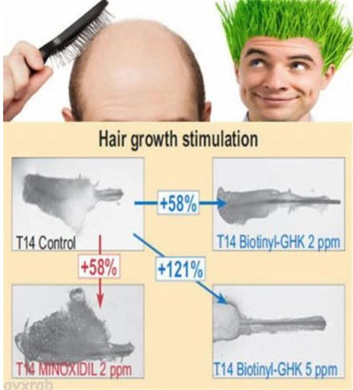 /Pure Procapil hair growth peptide additive for mixing with cream or serum